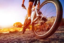 Club Mountain Bike Ride @ Please check for start location