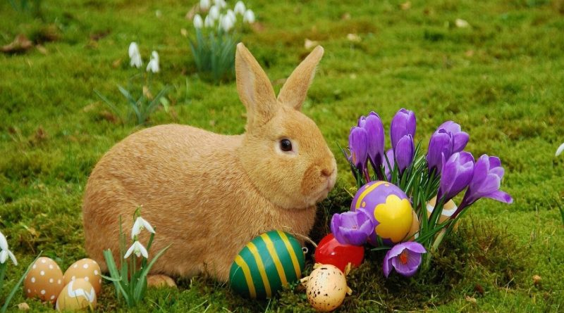 Happy Easter from Tuff Fitty